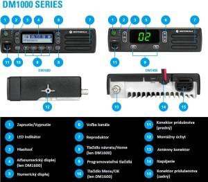 DM1000